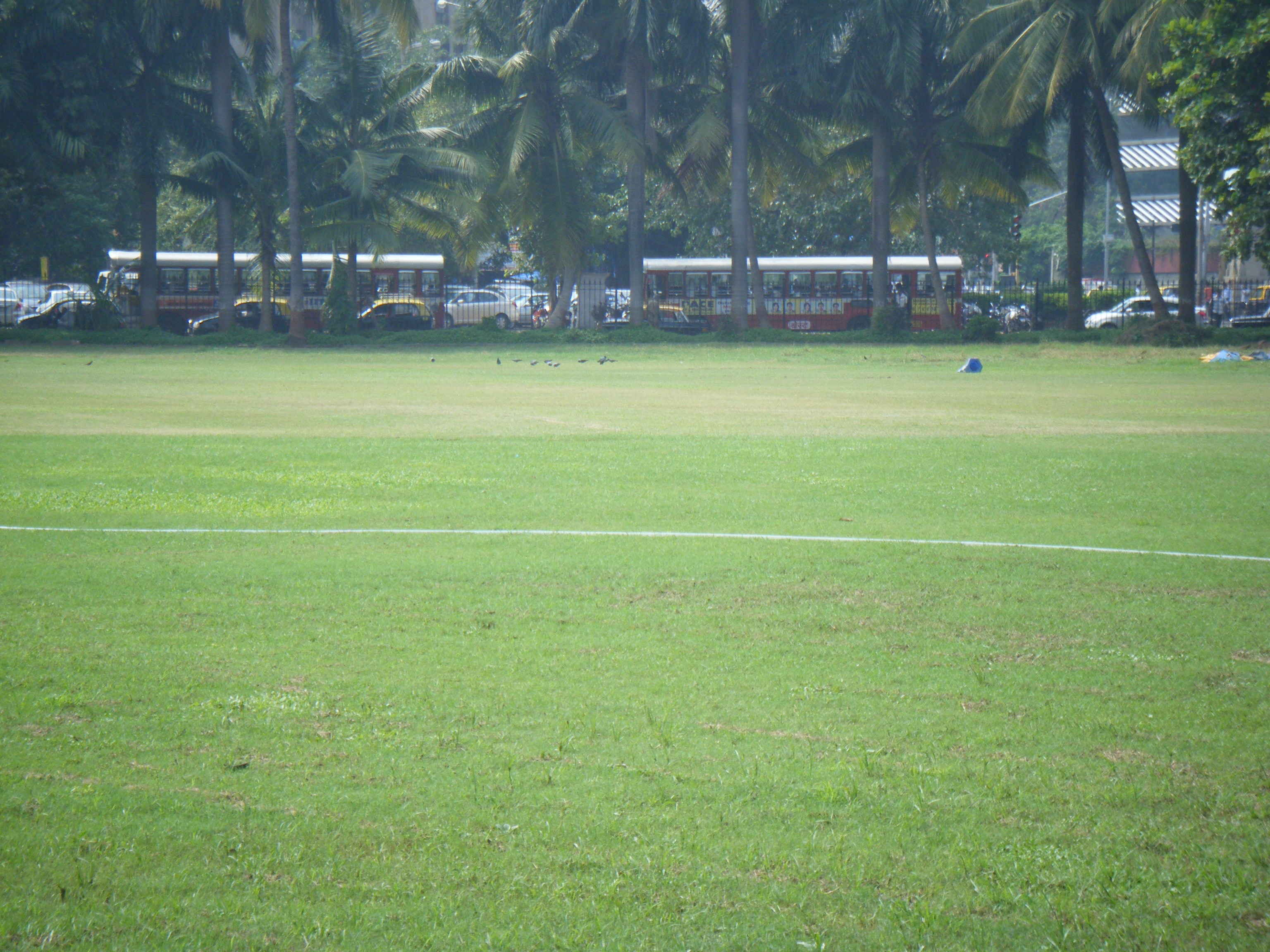 Elf Vengsarkar Cricket Academy (Oval) Ground